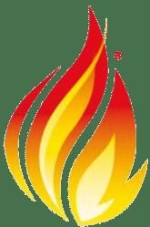 fhir-logo